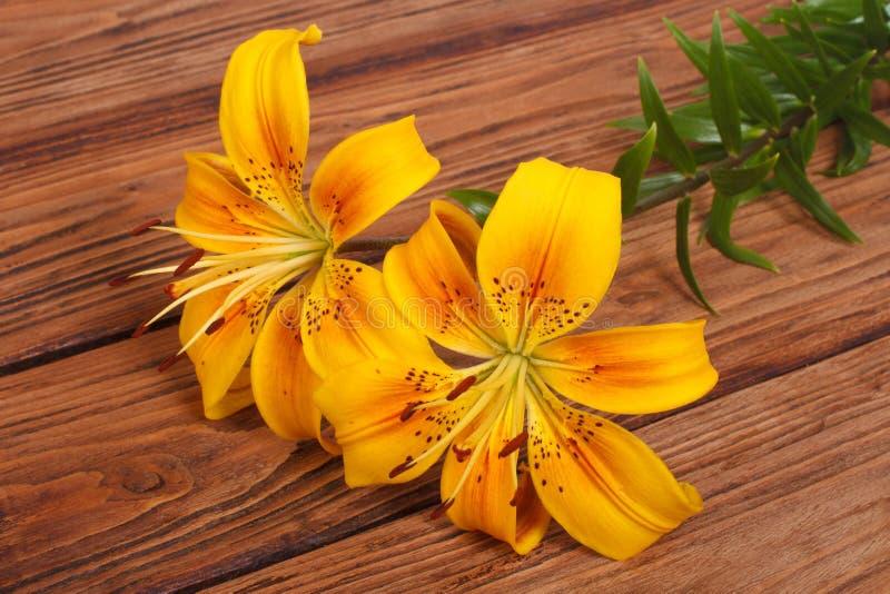 Boeket van gele leliebloem op bruine houten royalty-vrije stock foto's