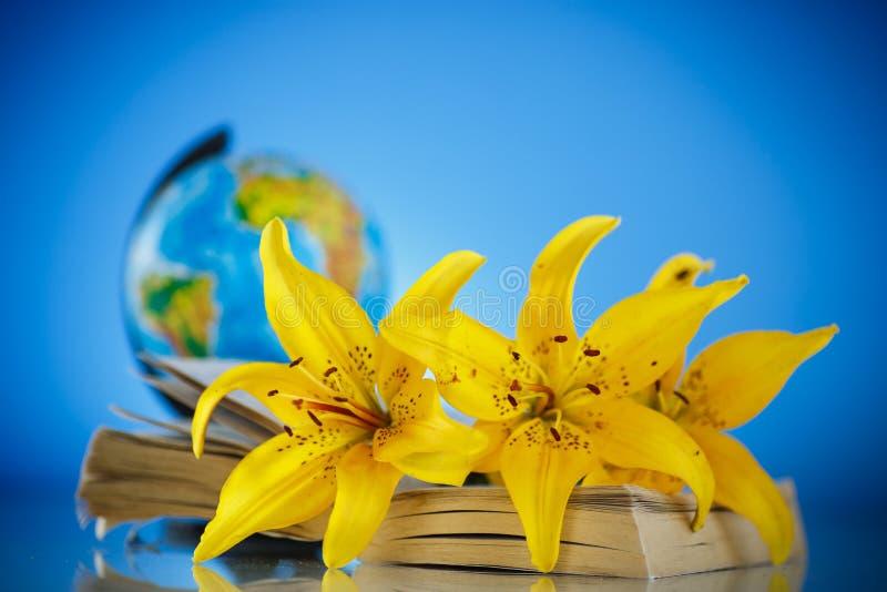 Boeket van gele lelies met een boek royalty-vrije stock afbeelding