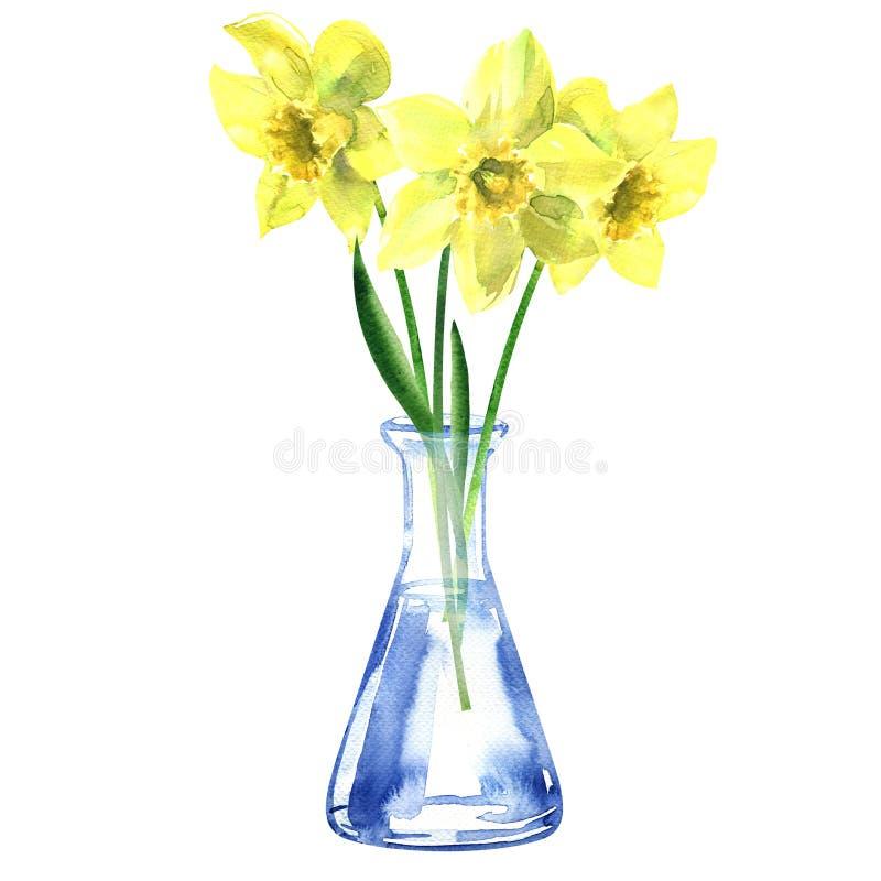 Boeket van gele narcissen met groene bladeren in een glasvaas of een fles, verse geïsoleerde gele narcisbloem, getrokken hand stock afbeeldingen
