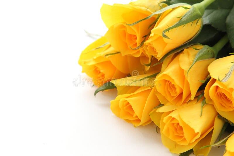 Boeket van gele rozen royalty-vrije stock foto's