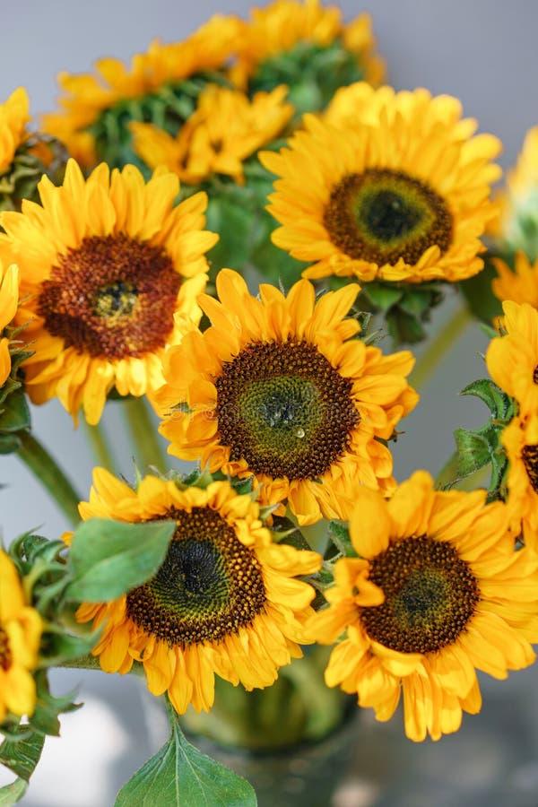 Boeket van gele zonnebloemen, bloem in vaas op oude uitstekende lijst Zaal ochtend Grijze achtergrond Kleuren van de herfst en royalty-vrije stock afbeeldingen