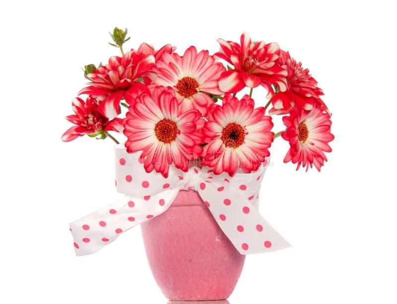 Boeket van gerberbloemen van de dahlia het Engelse stock foto