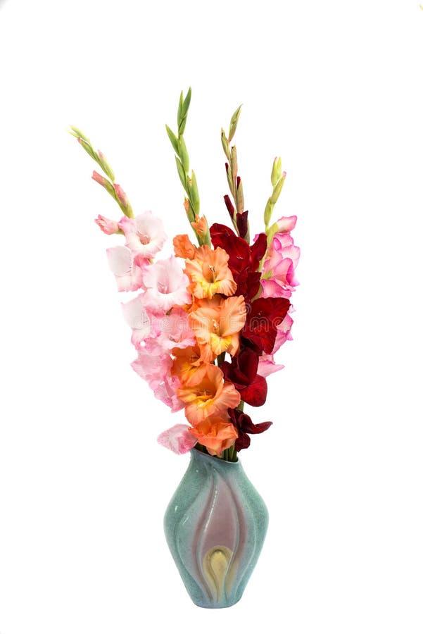 Boeket van Gladiolen royalty-vrije stock afbeeldingen