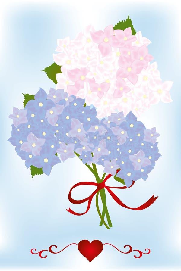Boeket van hydrangea hortensiabloemen en groene bladeren met rood hart stock illustratie