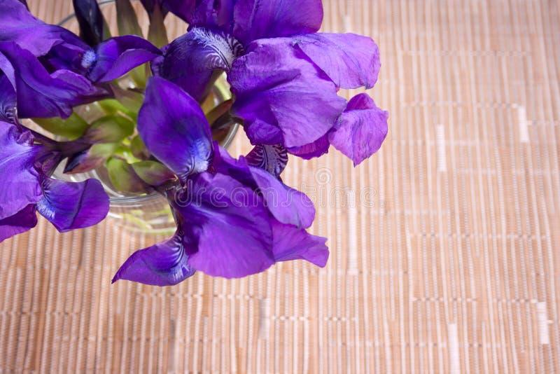 Boeket van irisbloemen royalty-vrije stock afbeelding
