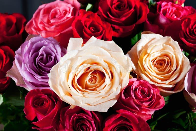 Boeket van kleurrijke rozen royalty-vrije stock foto's