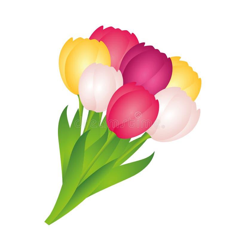 Boeket van kleurrijke tulpen op witte achtergrond royalty-vrije illustratie