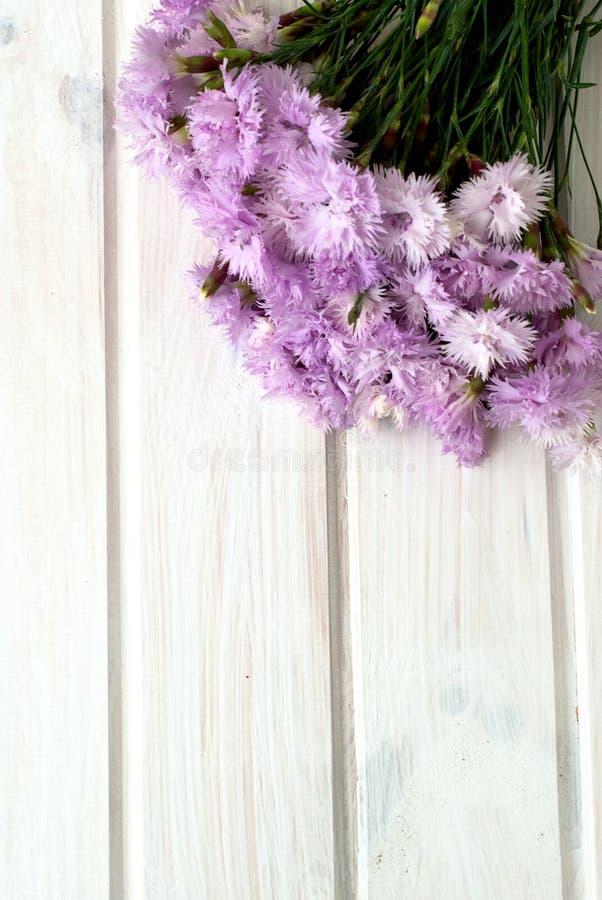 Boeket van korenbloemen op een witte houten achtergrond royalty-vrije stock foto