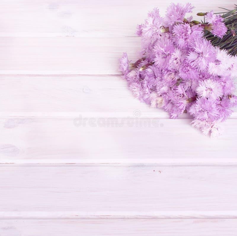Boeket van korenbloemen op een witte houten achtergrond stock fotografie
