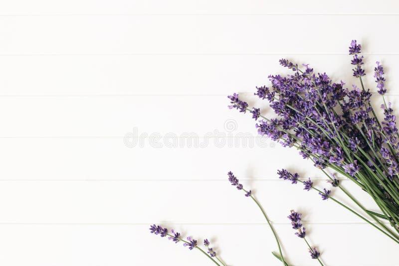 Boeket van lavendelbloemen op witte houten lijstachtergrond Decoratief bloemenkader, Webbanner met Lavandula stock fotografie