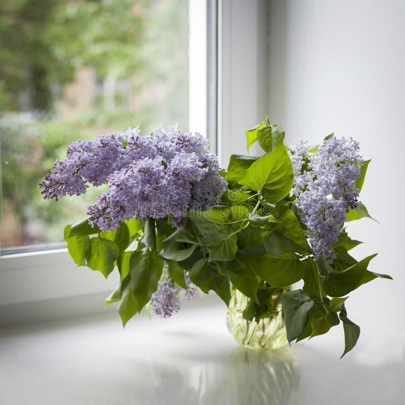 Boeket van lilac takjes in een transparante groene glasvaas op het venster royalty-vrije stock foto's