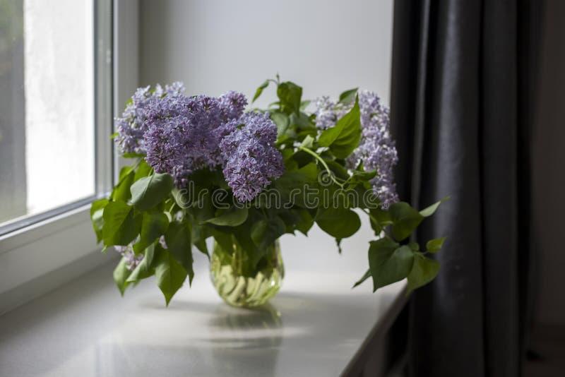 Boeket van lilac takjes in een transparante groene glasvaas op het venster stock foto's