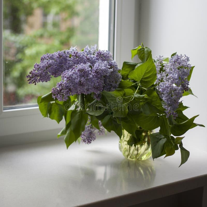 Boeket van lilac takjes in een transparante groene glasvaas op het venster stock afbeeldingen