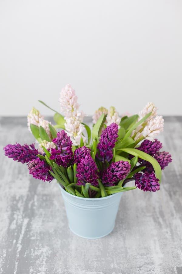 Boeket van Mooie violette en roze hyacinten De lentebloemen in vaas op grijze lijstachtergrond bolgewas royalty-vrije stock fotografie