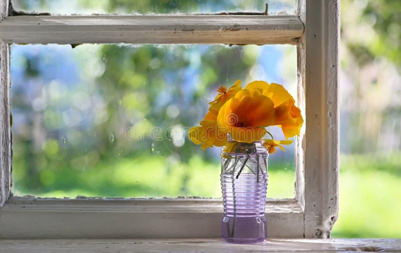 Boeket van oranje bloemen op venster Plattelander nog stock afbeelding