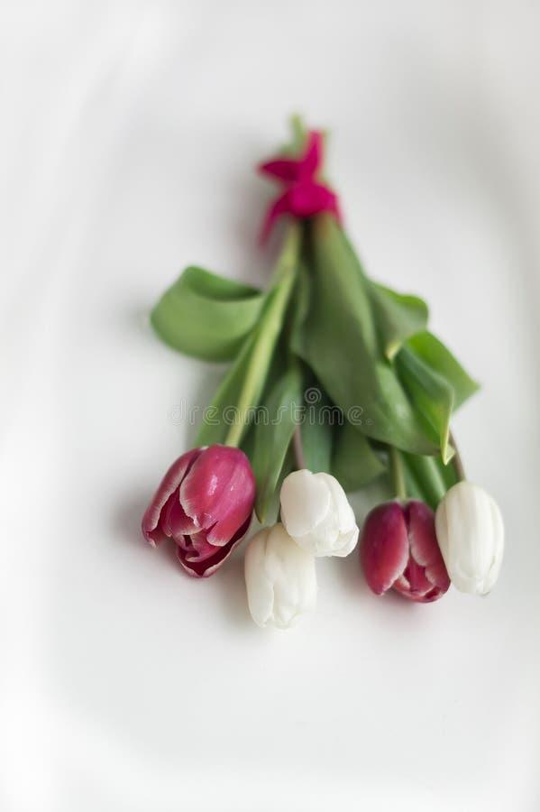 Boeket van purpere en witte tulpen royalty-vrije stock foto's