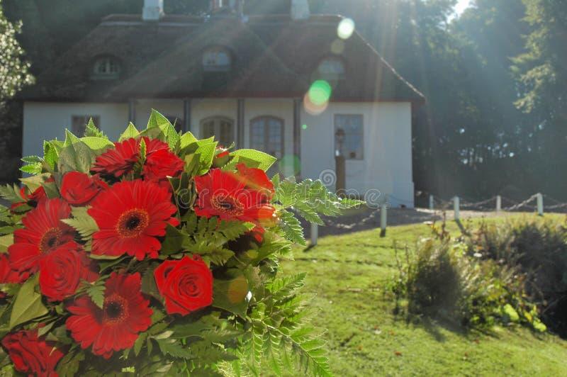 Boeket van rode bloemen stock foto