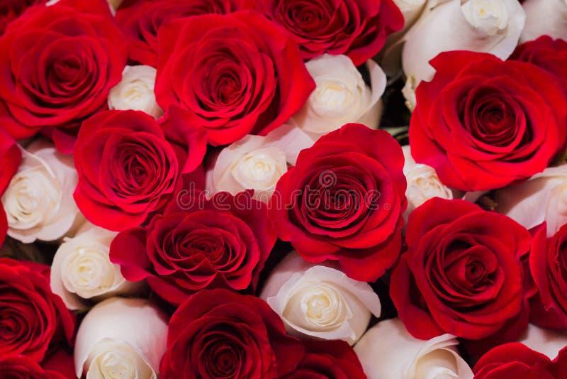 Boeket van rode en witte rozen, het concept Romaans of huwelijk stock foto