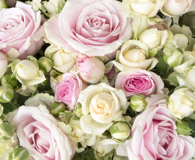 Boeket van rode rozen royalty-vrije stock afbeelding