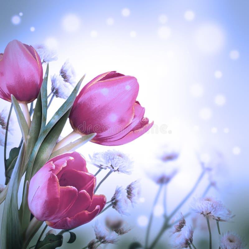 Boeket van rode tulpen royalty-vrije stock fotografie