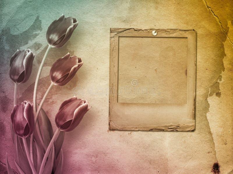 Boeket van rode tulpen met groene bladeren op abstract document backgr royalty-vrije stock foto's