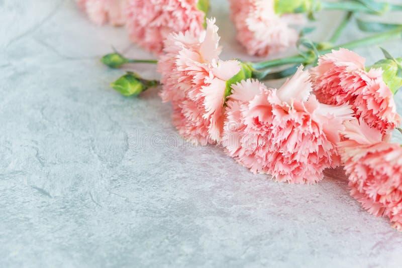 Boeket van roze anjers royalty-vrije stock fotografie