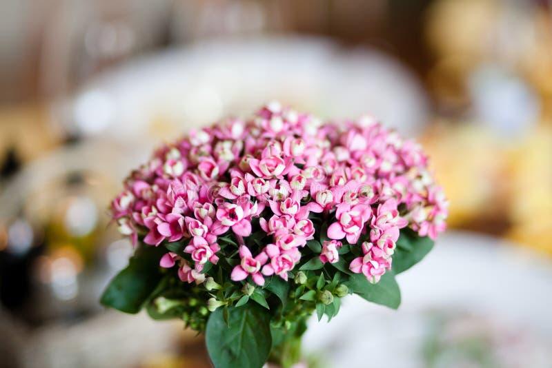 Boeket van roze bloemen stock foto's