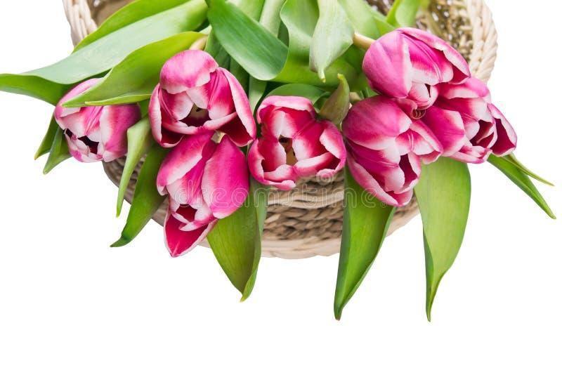 Boeket van roze mooie bloemen in een rieten mand op een witte achtergrond royalty-vrije stock foto's