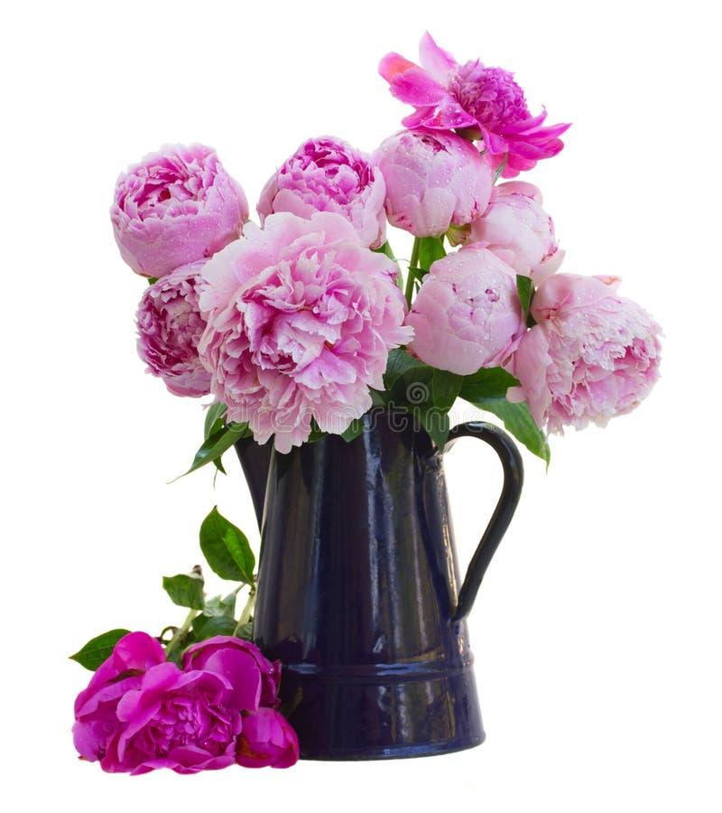 Boeket van roze pioenen in blauwe pot stock afbeeldingen