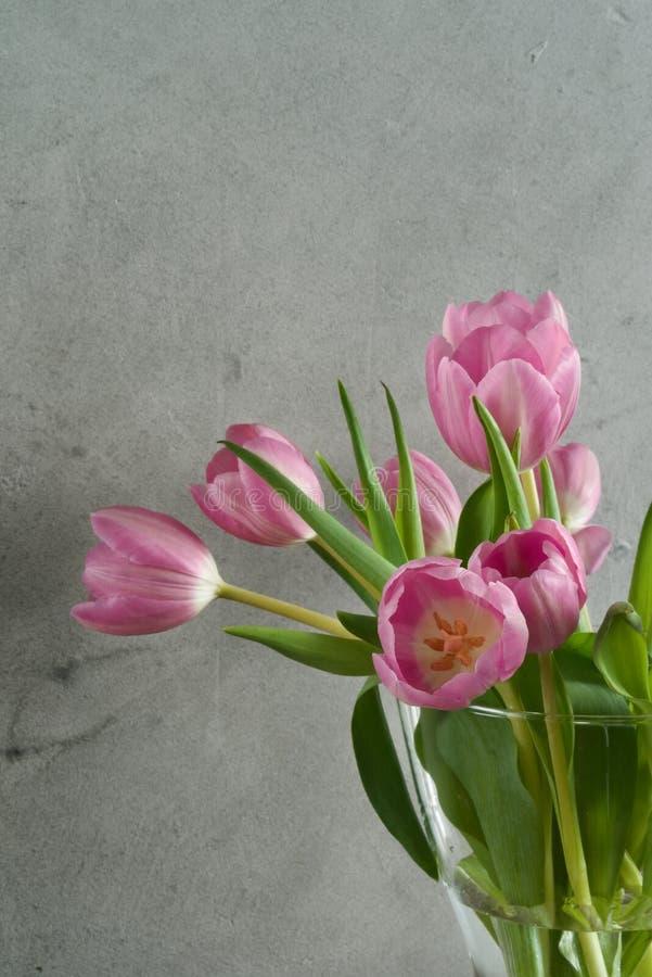 Boeket van roze tulpen in vaas royalty-vrije stock foto's