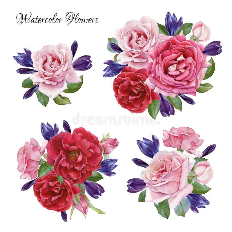 Boeket van rozen en krokussen Hand getrokken geplaatste waterverfbloemen vector illustratie