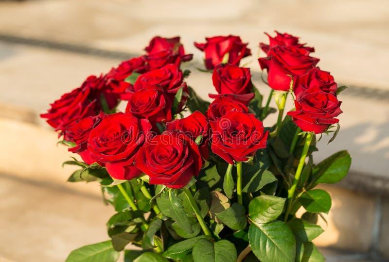 Boeket van tot bloei komende donkerrode rozen stock afbeeldingen