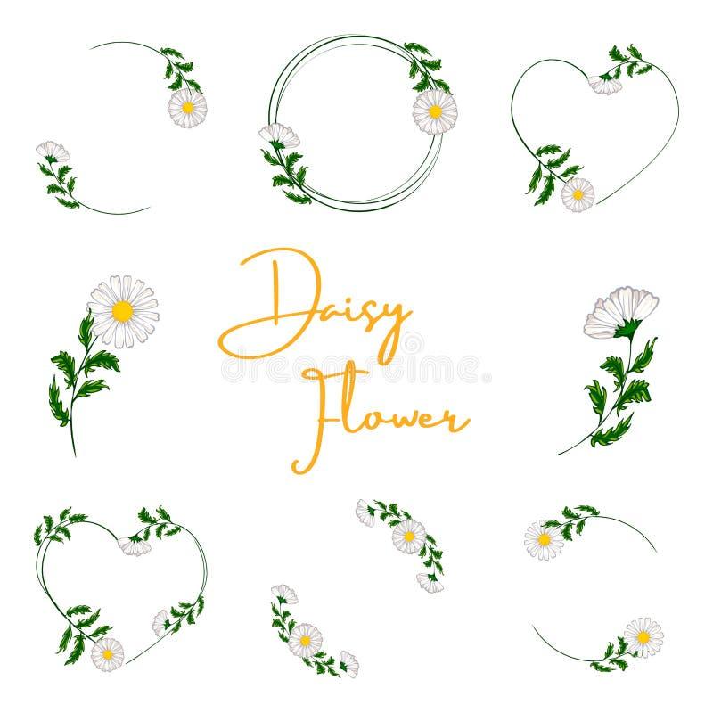 Boeket van verse bloemen stock illustratie