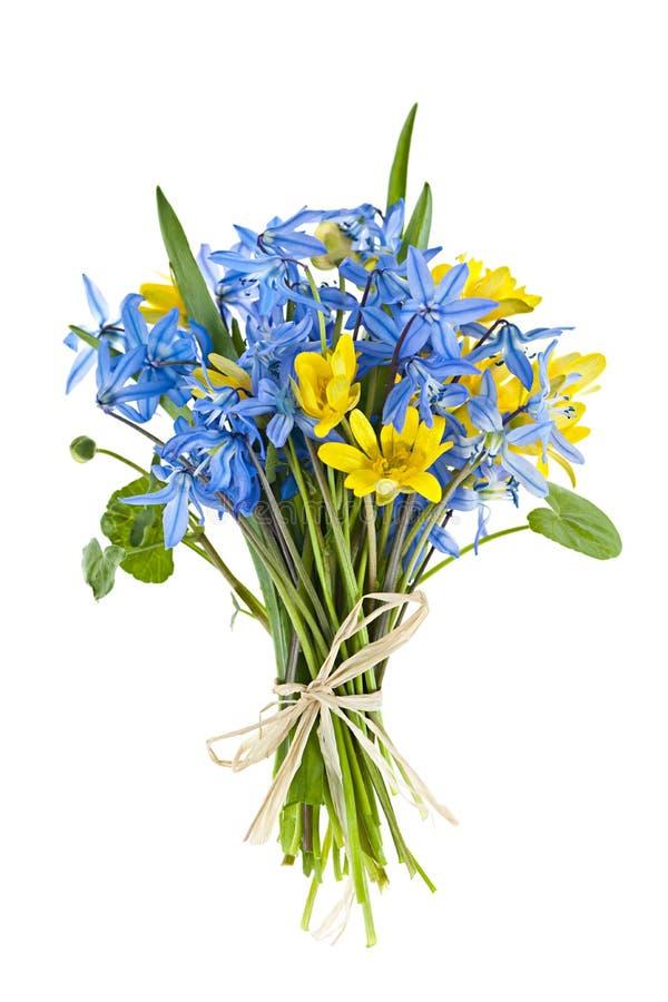Boeket van verse de lentebloemen stock afbeelding