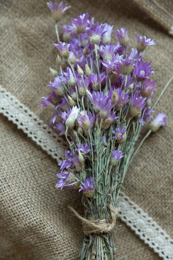 Boeket van violette bloemen royalty-vrije stock foto