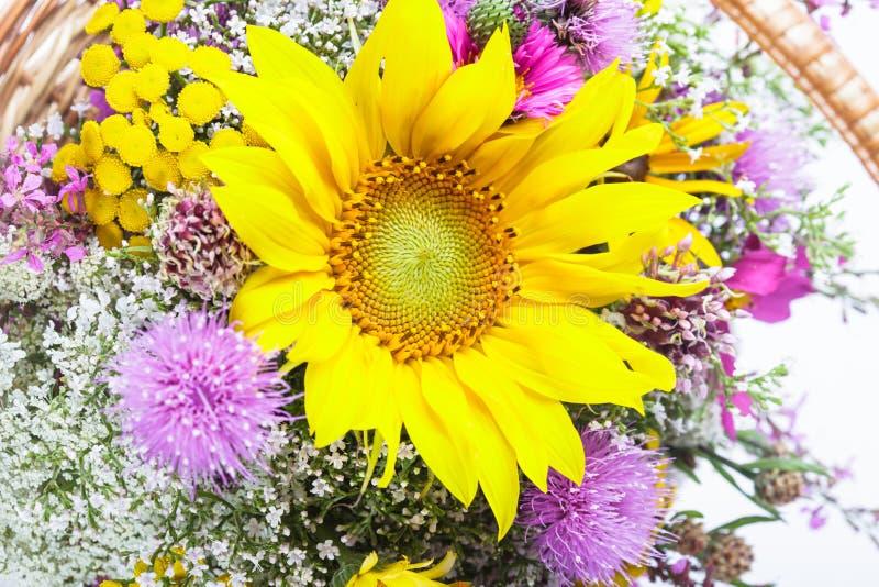 Boeket van wilde bloemen royalty-vrije stock foto's