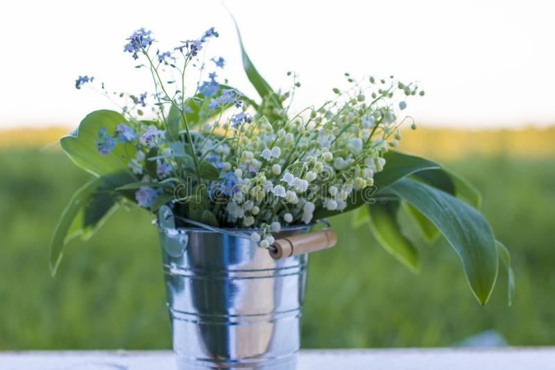 Boeket van wilde bloemen bij zonsondergang op het gebied royalty-vrije stock foto