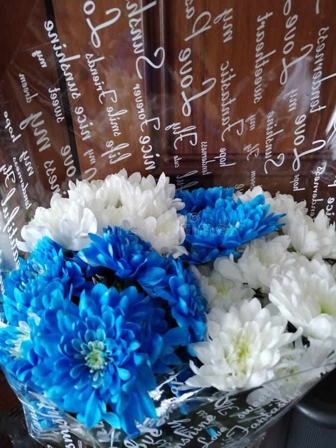 Boeket van witte en blauwe chrysanten stock foto's