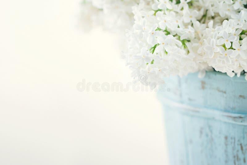 Boeket van witte lilac de lentebloemen stock foto's