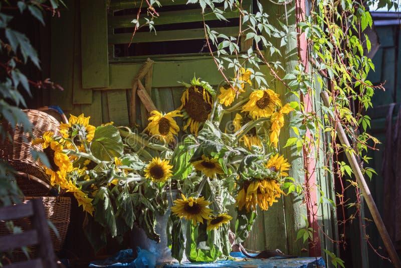 Boeket van zonnebloemen dichtbij de hut royalty-vrije stock afbeelding