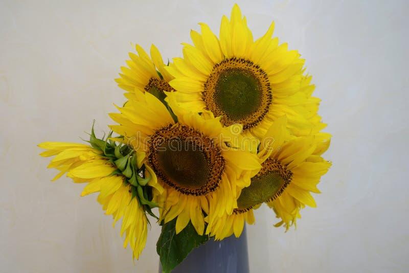 Boeket van zonnebloemen in een vaas stock afbeeldingen