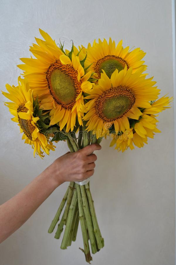 Boeket van zonnebloemen in een vaas royalty-vrije stock foto