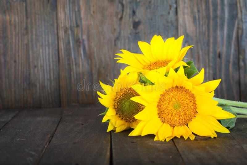 Boeket van zonnebloemen in glasvaas royalty-vrije stock foto's