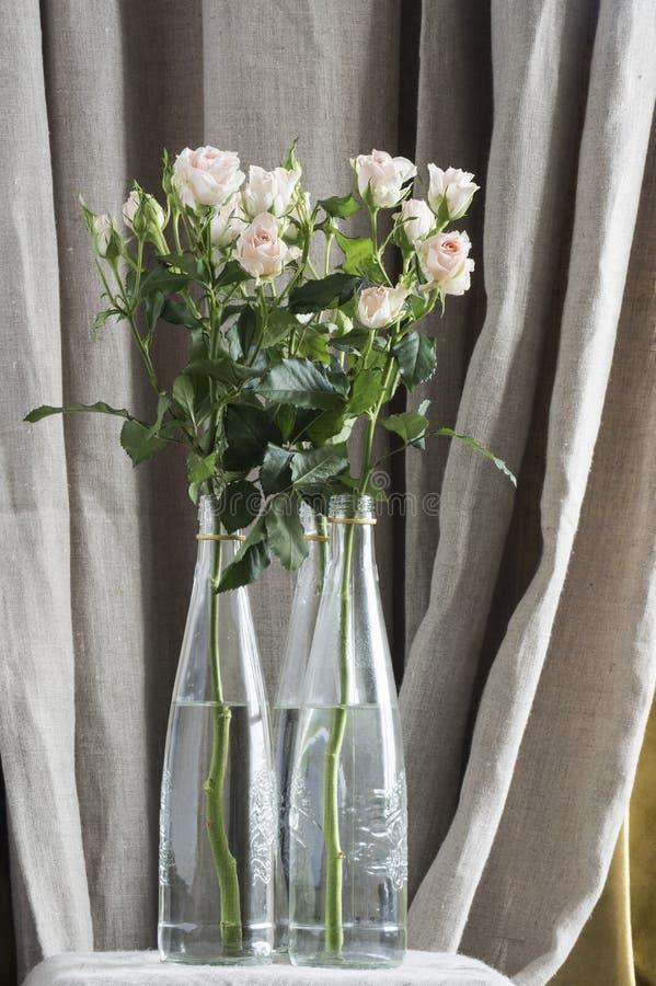Boeketten van nevelrozen van gevoelige roze kleur in glasflessen stock afbeelding