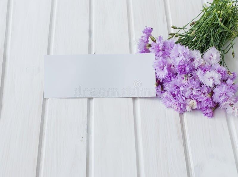 Boekettuin cornflowersop een witte houten achtergrond stock foto's