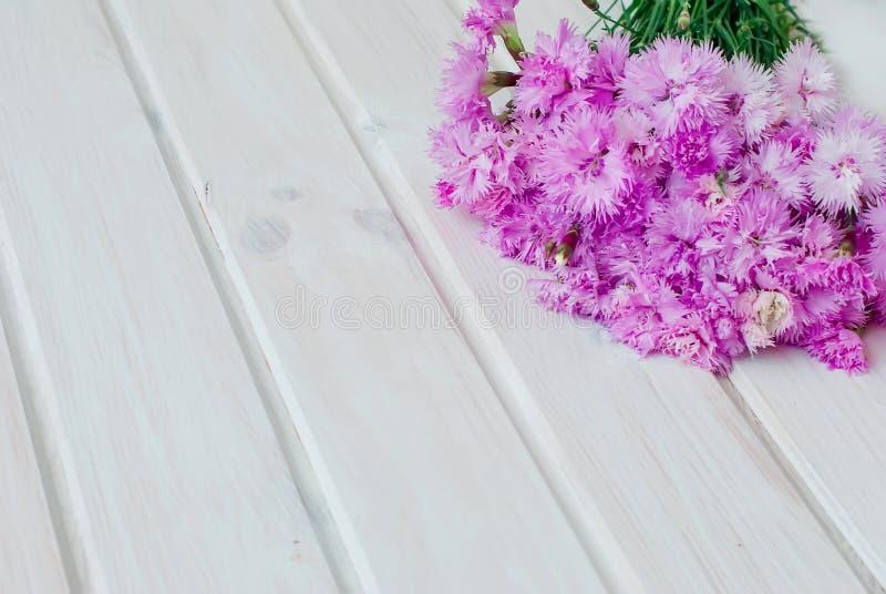 Boekettuin cornflowersop een witte houten achtergrond stock fotografie