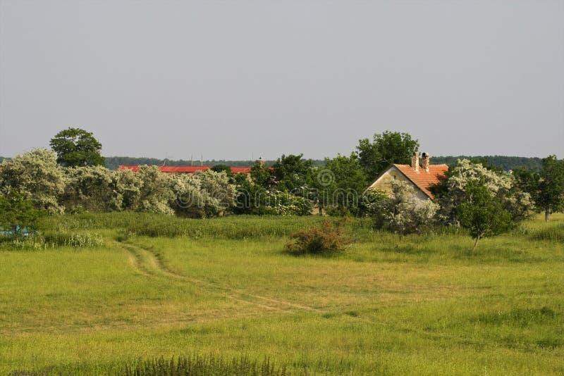 Boerderij, azienda agricola immagini stock libere da diritti