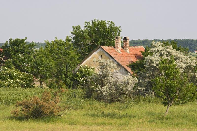 Boerderij, azienda agricola fotografia stock