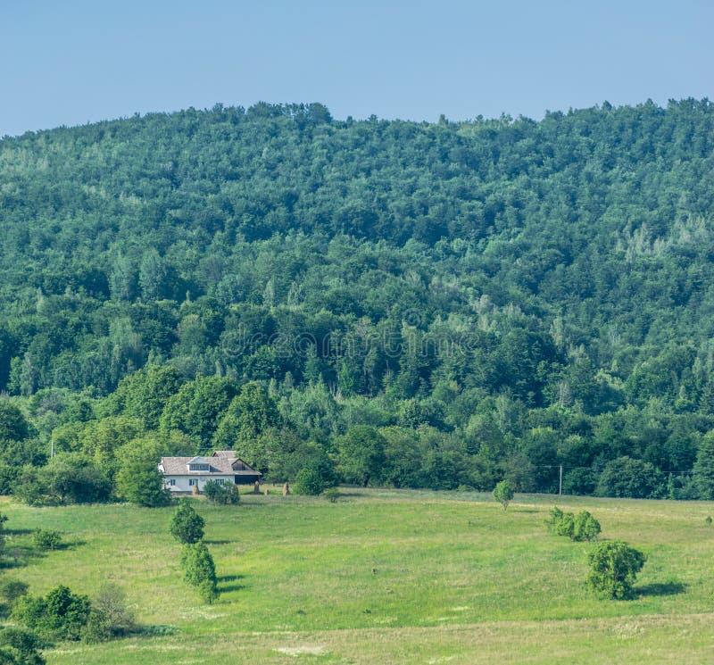 Boerderij, gebied en heuvelig bos stock afbeeldingen