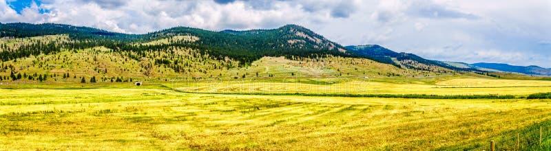 Boerderijland in Nicola Valley in Brits Colombia, Canada stock foto's